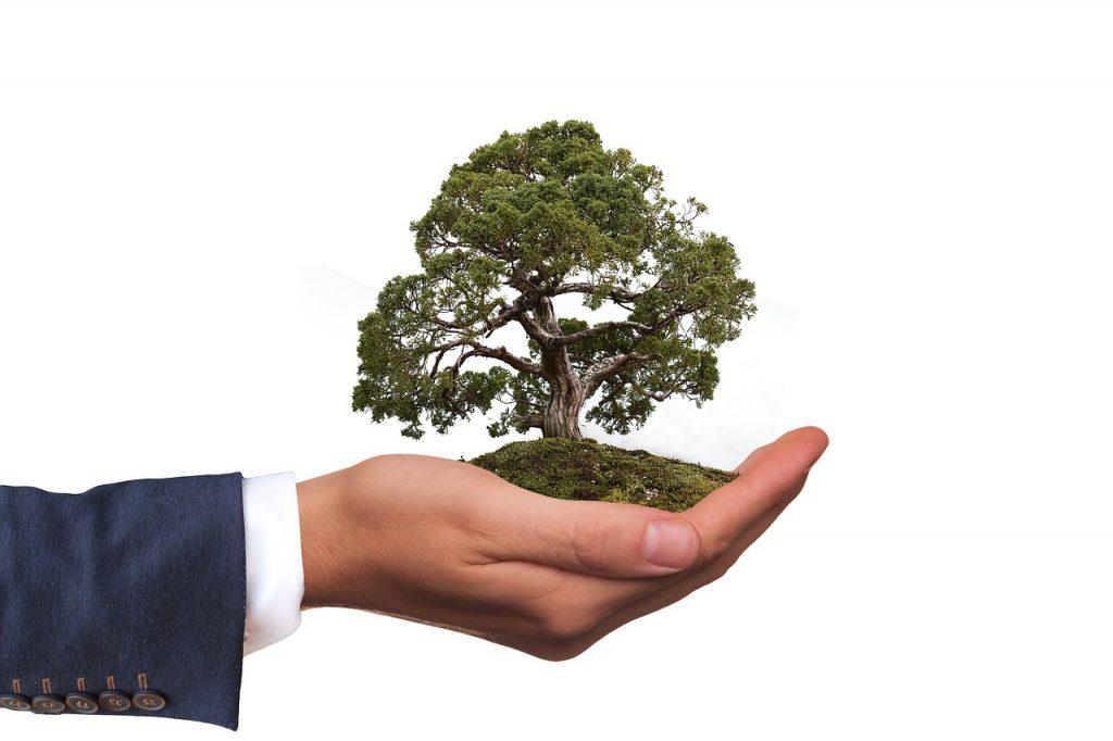 Consommer bio, un geste simple, mais efficace pour protéger l'environnement